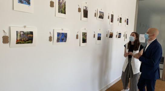Nueva exposición de Alex Gutiérrez para la Sala Protagonistas
