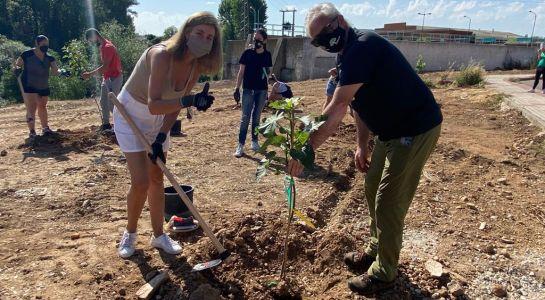 Plantación de árboles frutales en el nuevo Paseo Fluvial