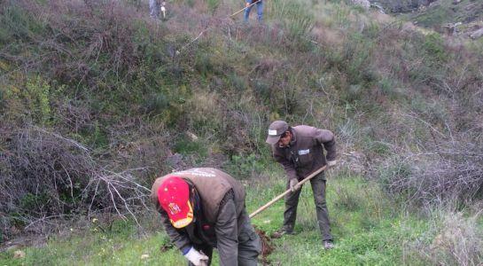 Nuevo curso de Jardinería con Certificado de Profesionalidad para desempleados